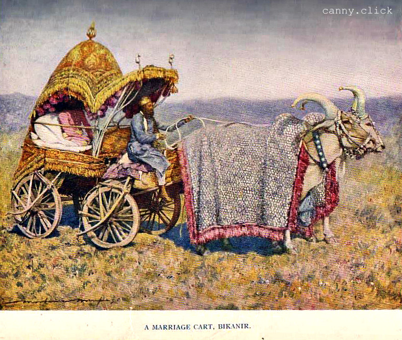 Marriage cart