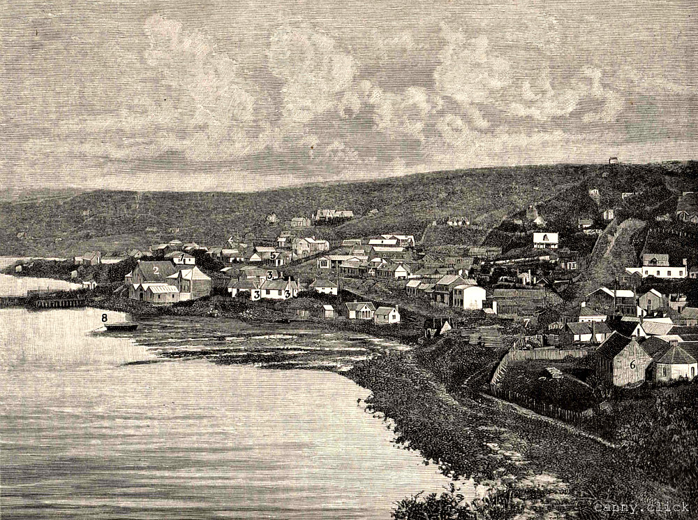 Dunedin in 1858